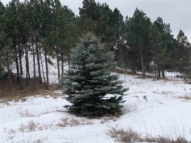 TBD Oak Drive, Whitewood, SD 57793 (MLS #63226) :: Christians Team Real Estate, Inc.