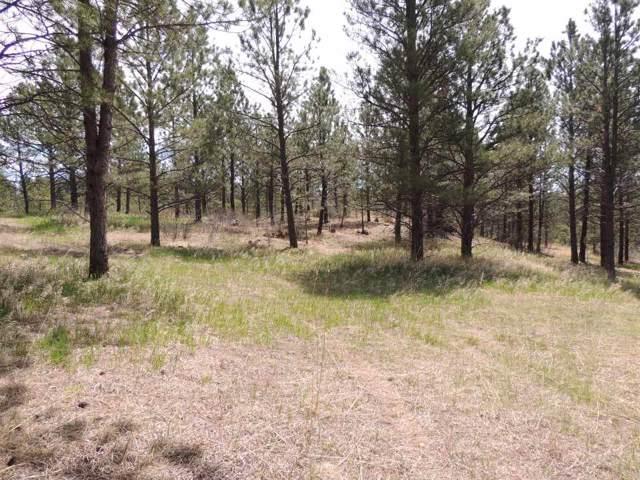 Lot 2 Concho Trail, Hermosa, SD 57744 (MLS #63315) :: Christians Team Real Estate, Inc.