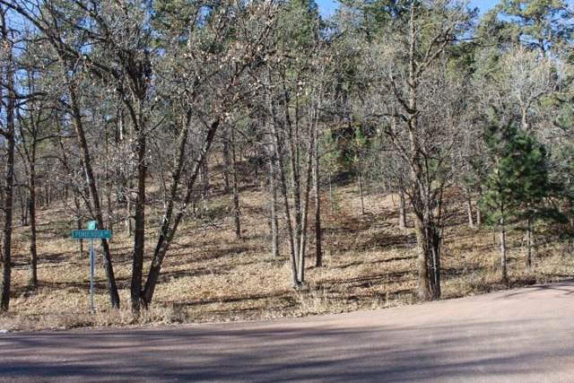 Lot 5, Blk 2 Whitewood Forest Acres, Whitewood, SD 57793 (MLS #63348) :: Dupont Real Estate Inc.