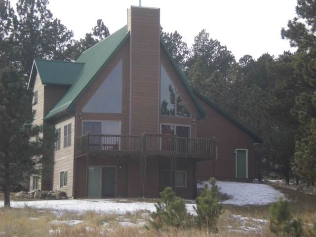 107 Trails End Court, Custer, SD 57730 (MLS #63400) :: Dupont Real Estate Inc.
