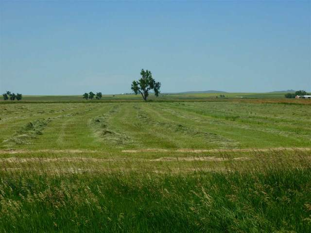 TBD Arpan Road, Nisland, SD 57762 (MLS #63609) :: VIP Properties