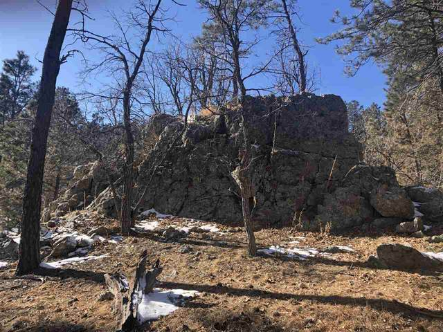 Tract Campfire Three Meadows, Keystone, SD 57751 (MLS #63674) :: VIP Properties