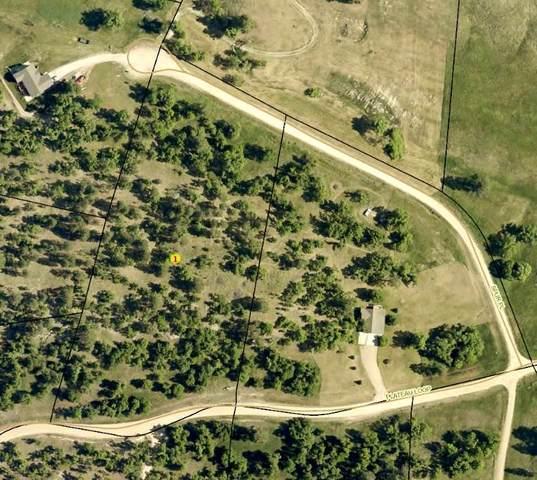 TBD Plateau Loop, Whitewood, SD 57793 (MLS #63677) :: Christians Team Real Estate, Inc.