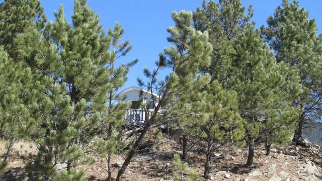 434 Pine Mountain Avenue, Hill City, SD 57745 (MLS #63698) :: VIP Properties