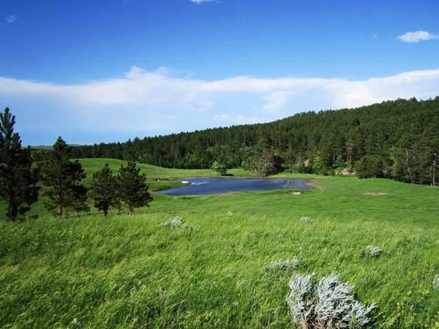 20867 Picardi Ranch, Sturgis, SD 57785 (MLS #63782) :: VIP Properties