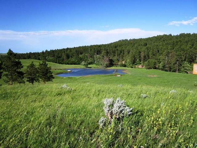 20867 Picardi Ranch, Sturgis, SD 57785 (MLS #63801) :: Christians Team Real Estate, Inc.