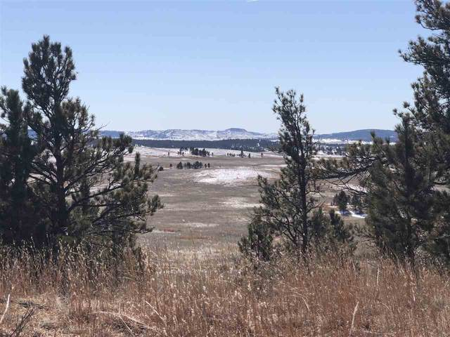 Pronghorn 5 Stage Stop Road, Custer, SD 57730 (MLS #63802) :: VIP Properties