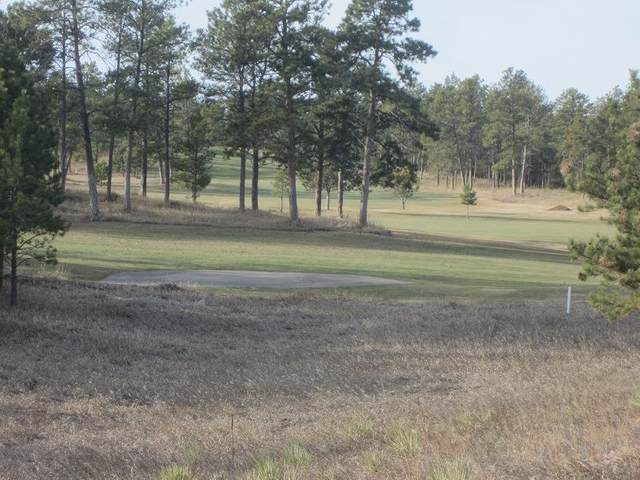 GC-29 Eagle Drive, Hot Springs, SD 57747 (MLS #63866) :: Dupont Real Estate Inc.