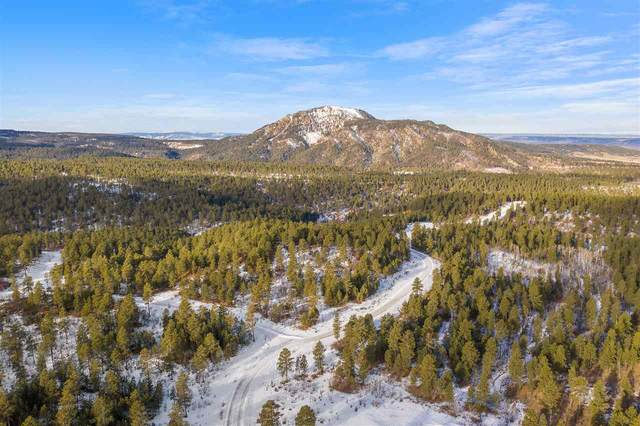 Lot 4 Tanager Court, Spearfish, SD 57783 (MLS #63914) :: VIP Properties