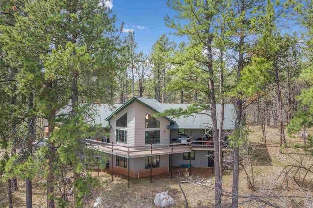 20671 Teddy Court, Sturgis, SD 57785 (MLS #63917) :: VIP Properties