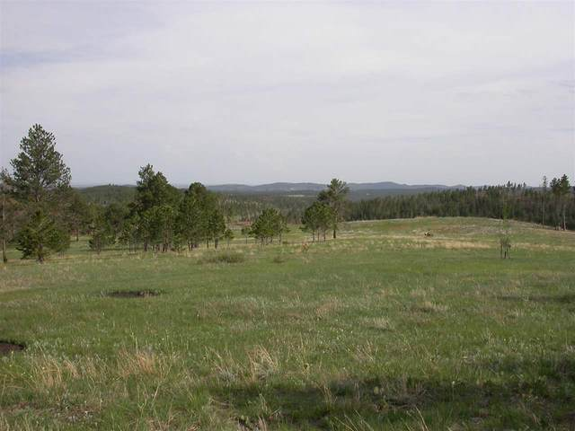 TBD Rushmore Ranch Road, Keystone, SD 57751 (MLS #63932) :: Dupont Real Estate Inc.