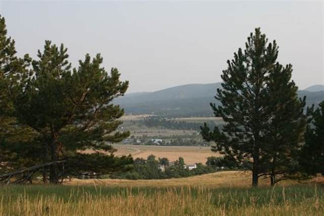 20497 Avalanche Road, Sturgis, SD 57785 (MLS #63980) :: VIP Properties