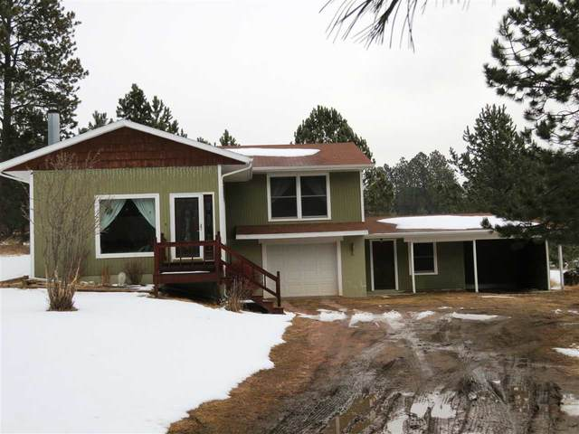 25288 Mill Pond Estates, Custer, SD 57730 (MLS #63996) :: VIP Properties
