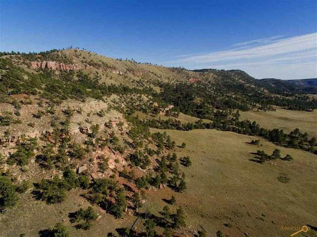 TBD Sheps Canyon Road, Hot Springs, SD 57747 (MLS #64021) :: Dupont Real Estate Inc.