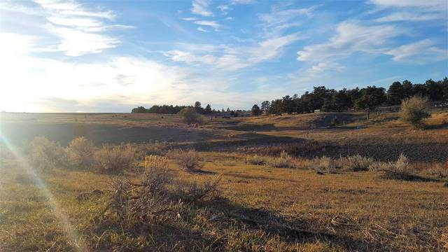 28482 Cascade Road, Hot Springs, SD 57747 (MLS #64036) :: Dupont Real Estate Inc.