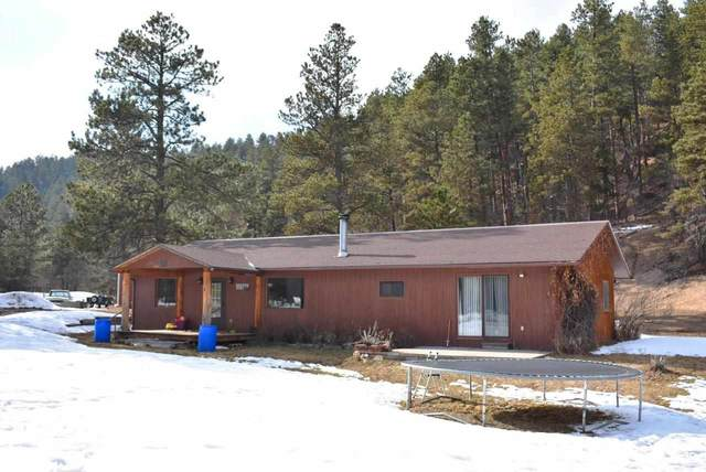 12276 Butte Creek, Sturgis, SD 57785 (MLS #64043) :: VIP Properties