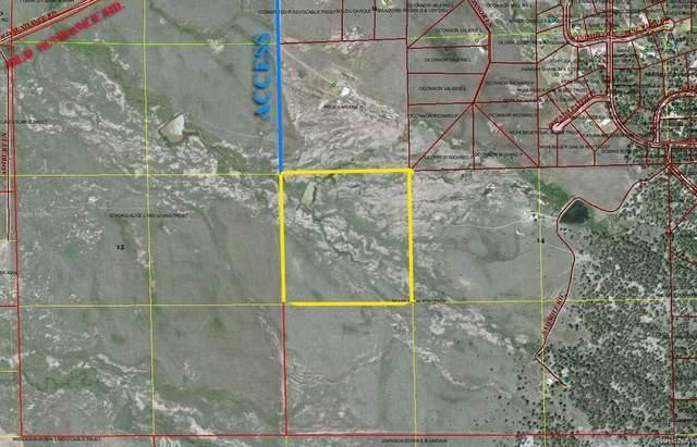 TBD Strong Lane, MOORCROFT, WY 82721 (MLS #64063) :: Black Hills SD Realty