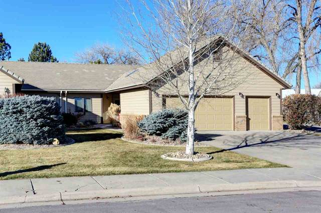 3601 Jolly Lane, Rapid City, SD 57702 (MLS #64089) :: Christians Team Real Estate, Inc.