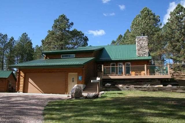 25255 Hylle Lane, Custer, SD 57730 (MLS #64132) :: VIP Properties
