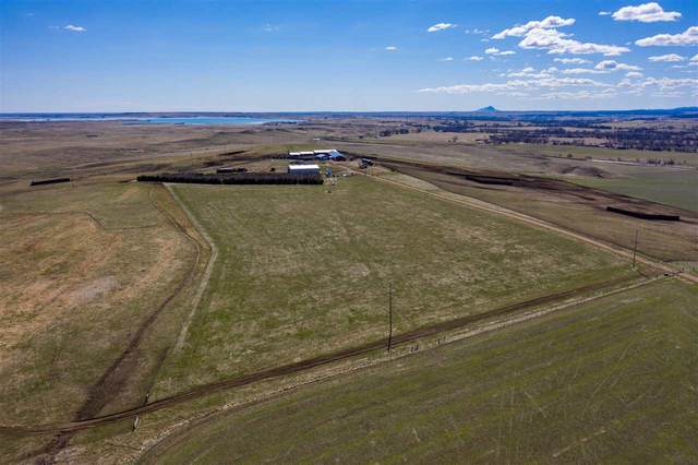18542 Dry Creek Road, Belle Fourche, SD 57717 (MLS #64511) :: Christians Team Real Estate, Inc.