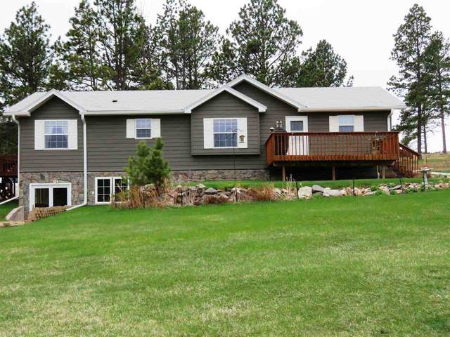 25241 Renegade Pass, Custer, SD 57730 (MLS #64552) :: Christians Team Real Estate, Inc.