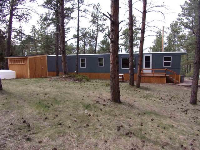12616 Dana Road, Hot Springs, SD 57747 (MLS #64595) :: VIP Properties