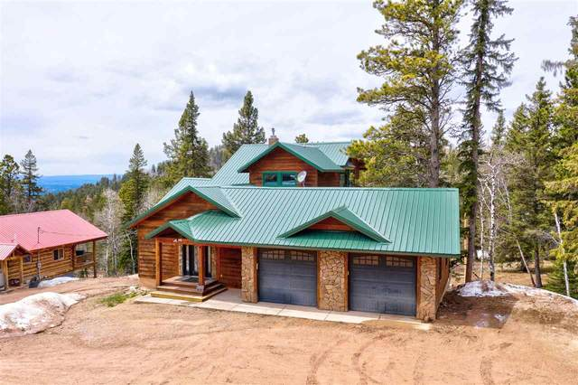 21155 Lost Camp Trail, Lead, SD 57754 (MLS #64613) :: Christians Team Real Estate, Inc.