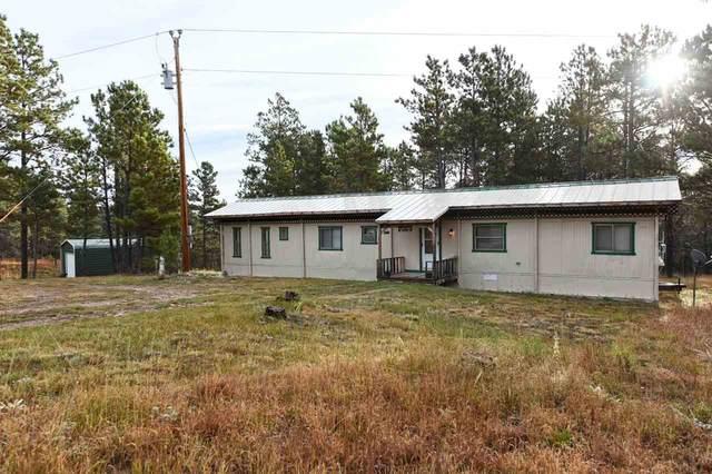 12478 W Cascade Mountain Road, Hot Springs, SD 57747 (MLS #64639) :: VIP Properties