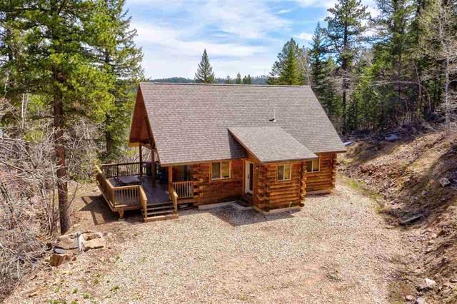 20740 Ida Grey Drive, Lead, SD 57754 (MLS #64671) :: Dupont Real Estate Inc.