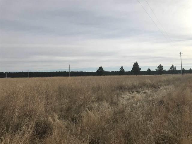 TBD Turkey Trail, Custer, SD 57735 (MLS #64713) :: Christians Team Real Estate, Inc.