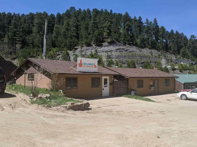 403-405 Glendale Avenue, Lead, SD 57754 (MLS #64727) :: Christians Team Real Estate, Inc.