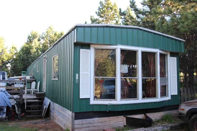 12231 Lynn Drive, Custer, SD 57730 (MLS #64734) :: Christians Team Real Estate, Inc.