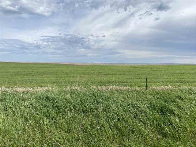 Address Not Published, Newell, SD 57760 (MLS #64744) :: Christians Team Real Estate, Inc.