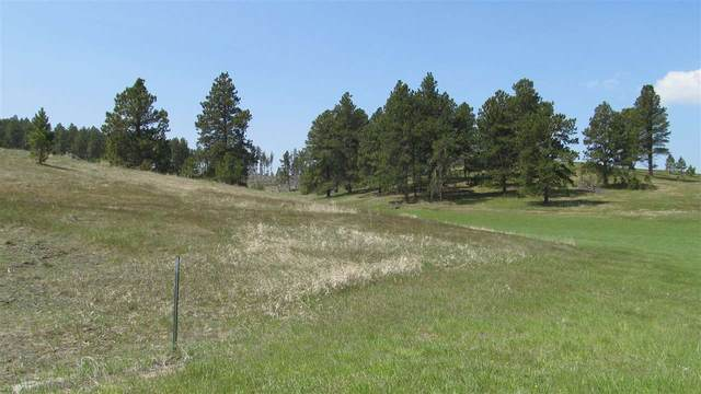 Lot 9 Pyrite Street, Hill City, SD 57745 (MLS #64816) :: VIP Properties