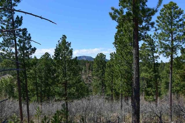 40 acres,38,39 Aspen Hills Road, Spearfish, SD 57783 (MLS #64873) :: Black Hills SD Realty