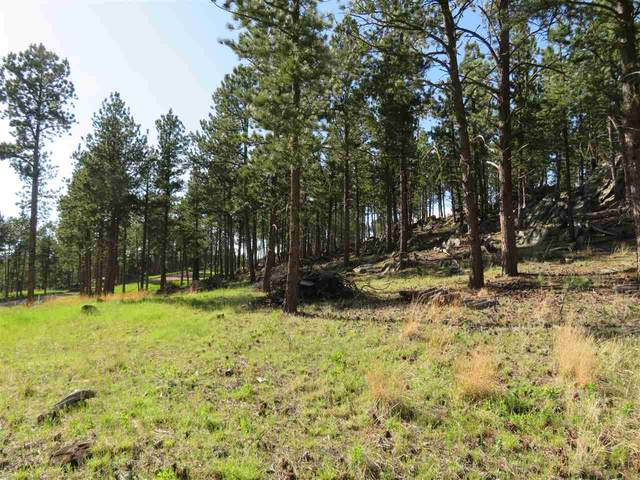TBD Caledonia Trail, Custer, SD 57730 (MLS #64887) :: Dupont Real Estate Inc.