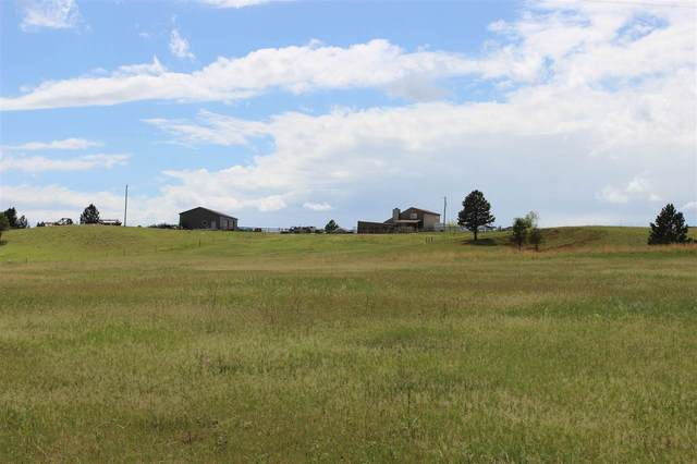 10352 View Drive, Custer, SD 57730 (MLS #64943) :: Dupont Real Estate Inc.