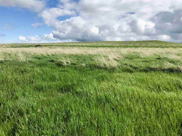 TBD Wagon Box Drive, Whitewood, SD 57793 (MLS #64981) :: Dupont Real Estate Inc.