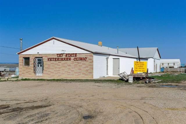 18651 Livestock Road, Belle Fourche, SD 57783 (MLS #65062) :: Dupont Real Estate Inc.