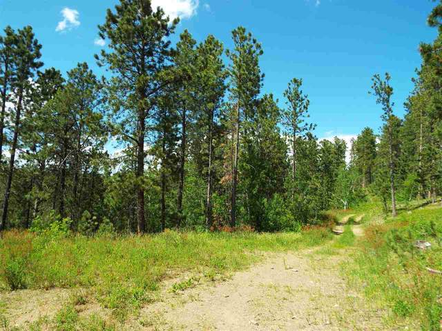 Lot 6A Rocky Point Road, Spearfish, SD 57783 (MLS #65193) :: Christians Team Real Estate, Inc.