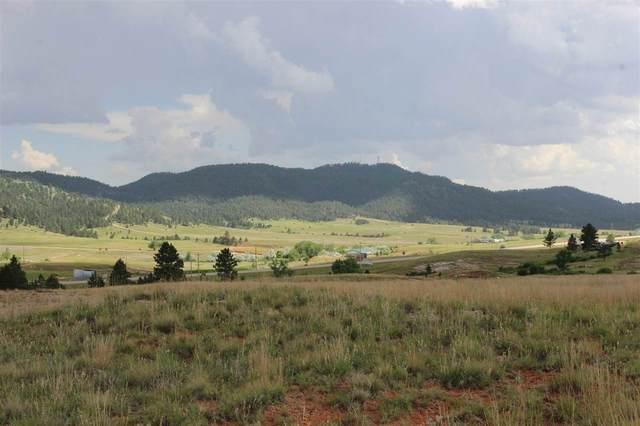 TBD Highway 385, Hot Springs, SD 57747 (MLS #65211) :: Dupont Real Estate Inc.