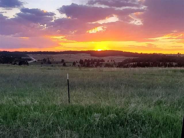26690 Highway 89, Custer, SD 57730 (MLS #65263) :: Dupont Real Estate Inc.