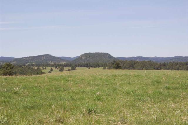 TBD Sheridan Lake Road, Rapid City, SD 57702 (MLS #65274) :: Dupont Real Estate Inc.