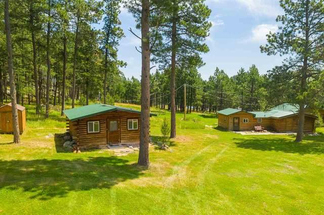 12554 Hazelrodt Cutoff, Custer, SD 57730 (MLS #65295) :: VIP Properties