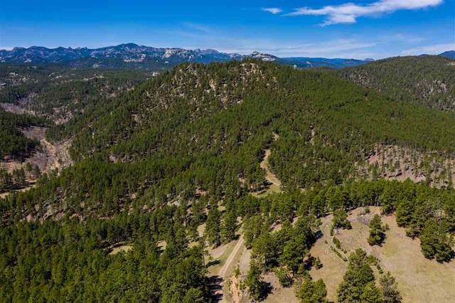 TBD Schenk Road, Keystone, SD 57751 (MLS #65305) :: VIP Properties