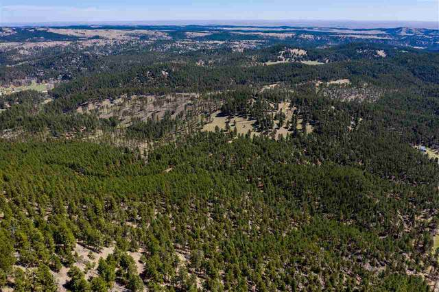 TBD Schenk Road, Keystone, SD 57751 (MLS #65306) :: VIP Properties