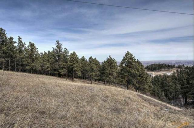 3350 Skyline Drive, Rapid City, SD 57701 (MLS #65323) :: VIP Properties