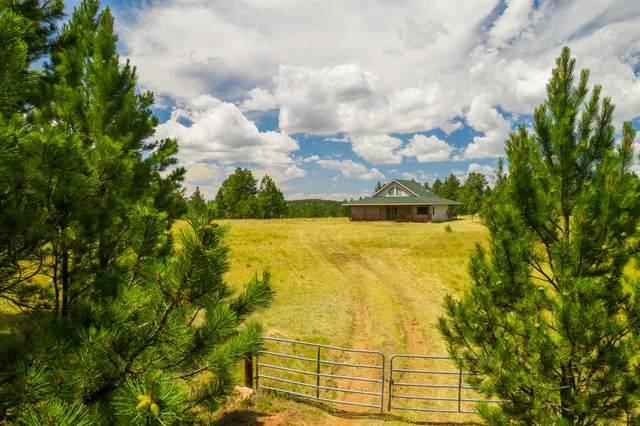 11803 W Argyle Road, Custer, SD 57730 (MLS #65367) :: Dupont Real Estate Inc.