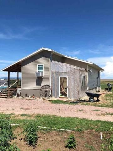 14426 Oral Road, Oral, SD 57766 (MLS #65402) :: Dupont Real Estate Inc.