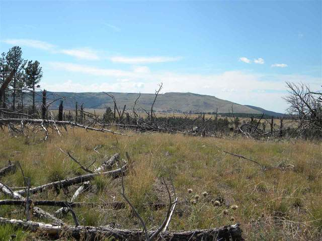 Address Not Published, Custer, SD 57730 (MLS #65410) :: Dupont Real Estate Inc.